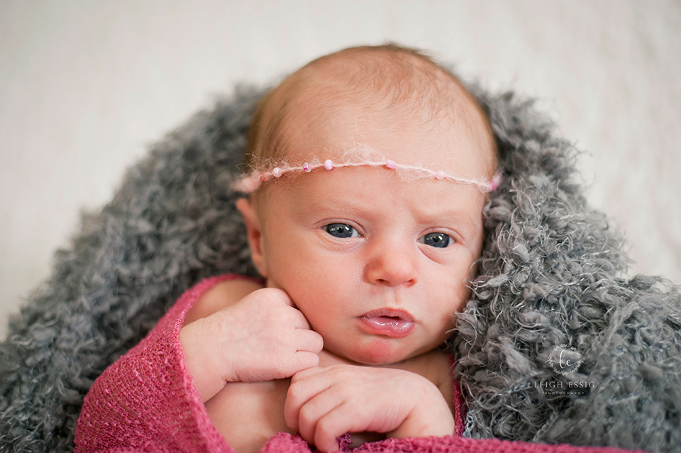 Newborn photographer in SC - baby girl in pink wrap on gray backdrop